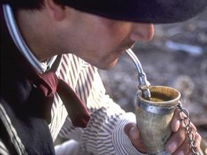 LA YERBA MATE BIO : une boisson traditionnelle